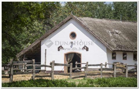 Eladó Ház, Bács-Kiskun megye, Kecskemét - Akár FALUSI TURIZMUS ,akár HÉTVÉGI HÁZ kialakítására szolgáló ,gyönyörű birtok ELADÓ!!